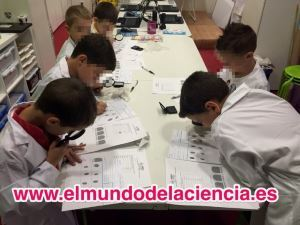 science world talleres 300