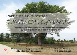 Emboscadas: Plantación árboles